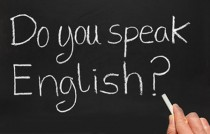newlink-academia-de-idiomas